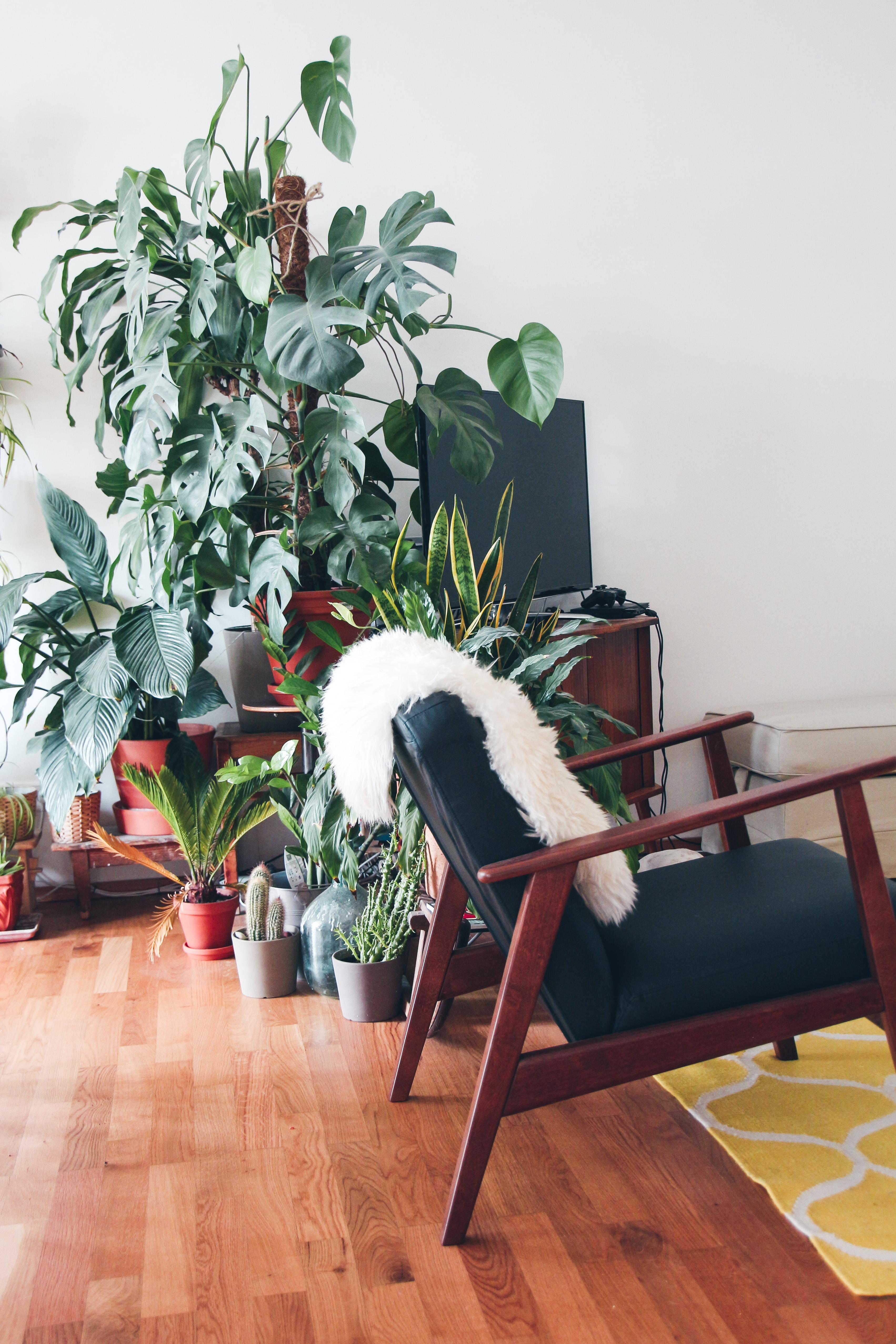 white fur textile on armchair