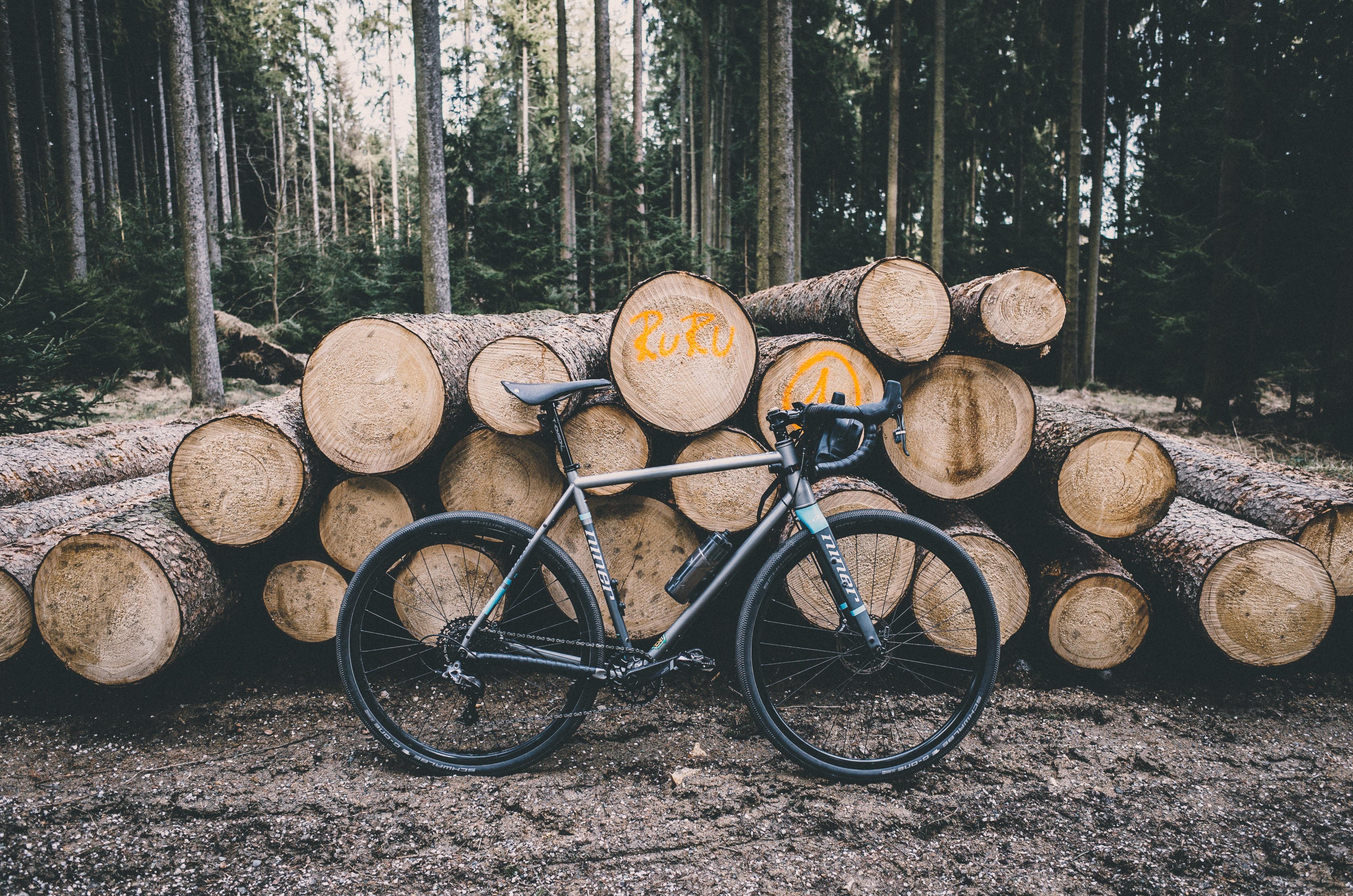gray city bike