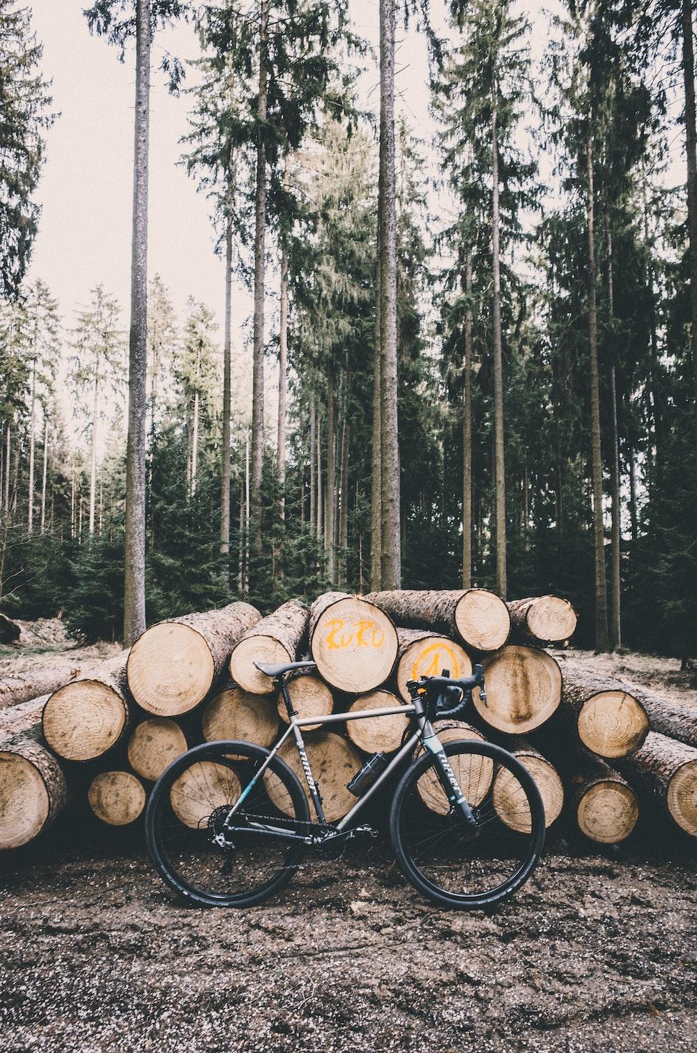 gray road bike leaning on tree logs