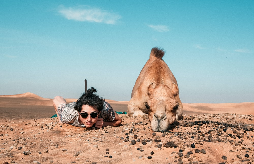 man and camel lying on ground