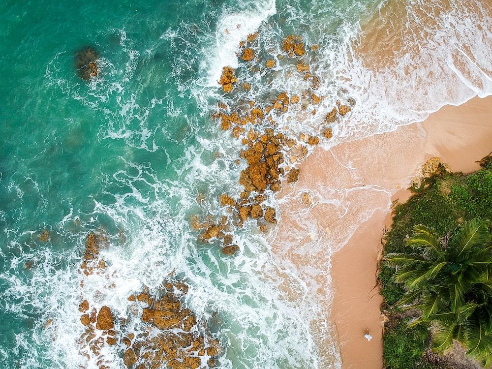 aerial shot of seashore