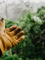 How to Protect Hands While Gardening
