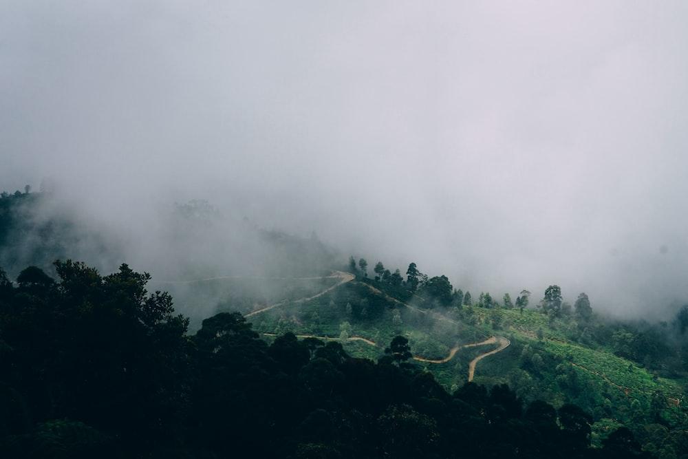Highland in Sri Lanka