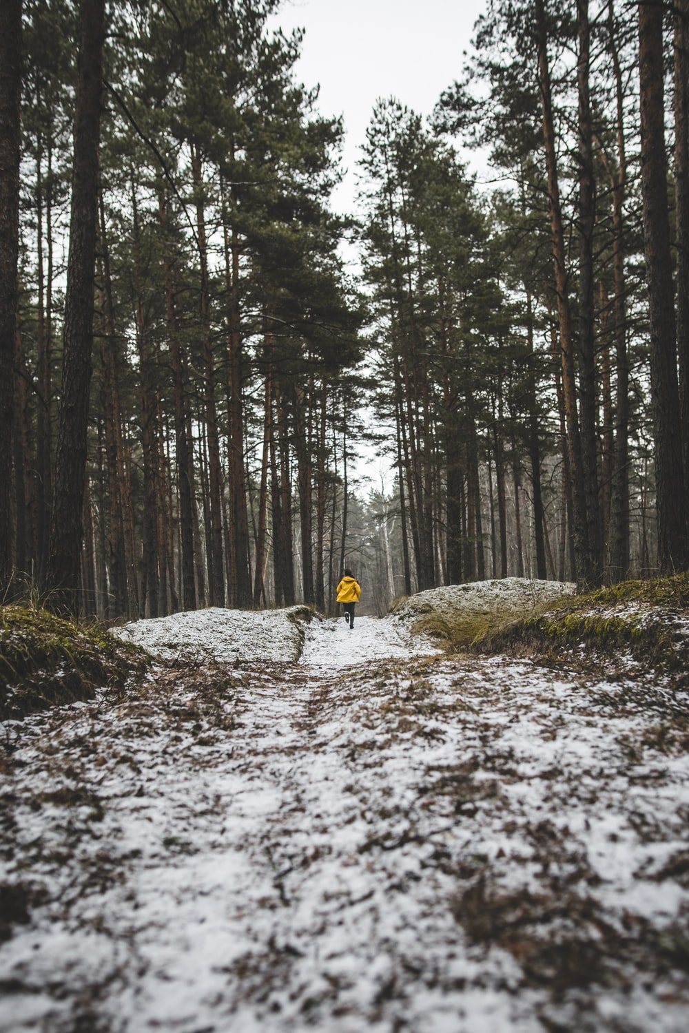 person in yellow jacket running on forest
