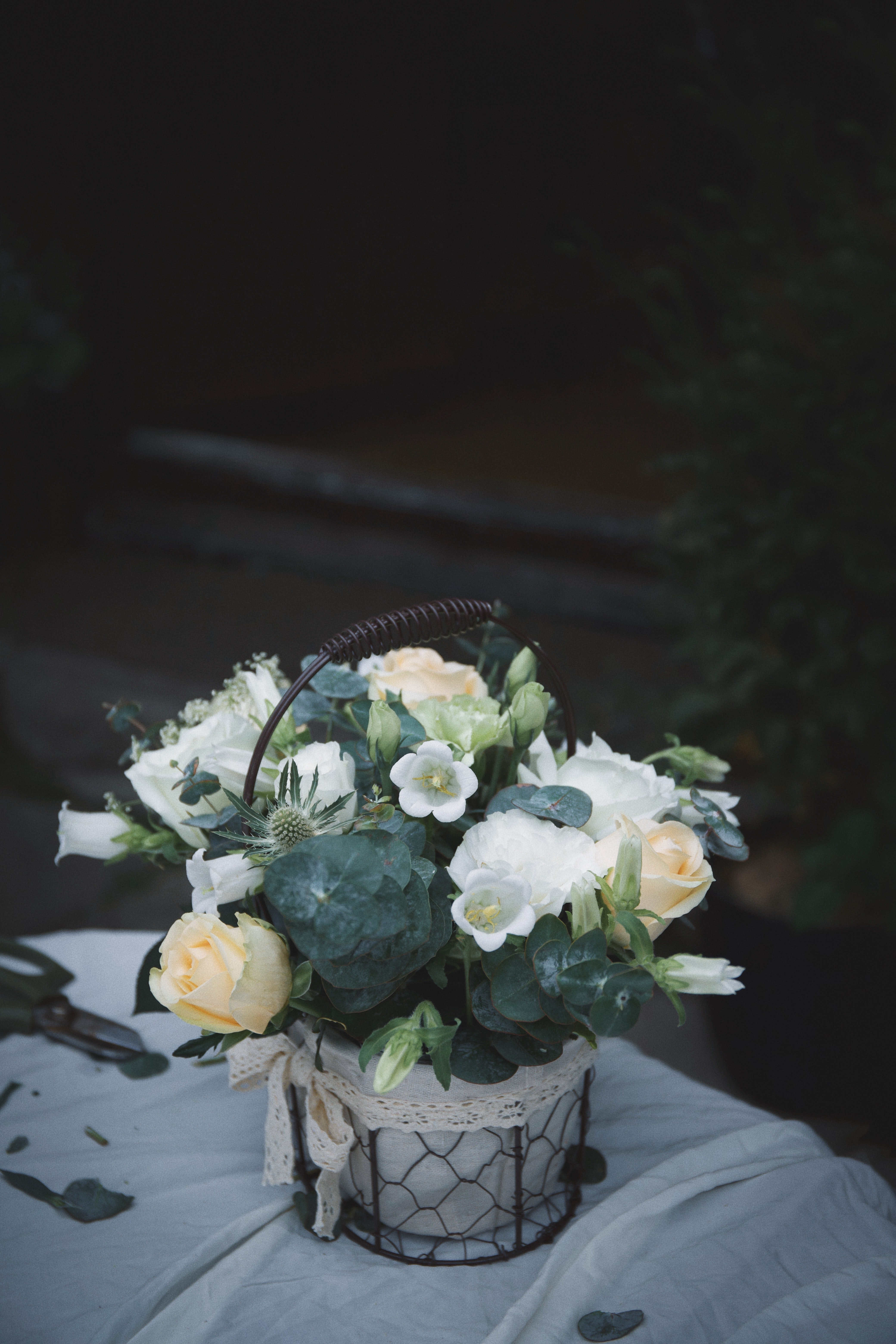 white and beige petaled flower
