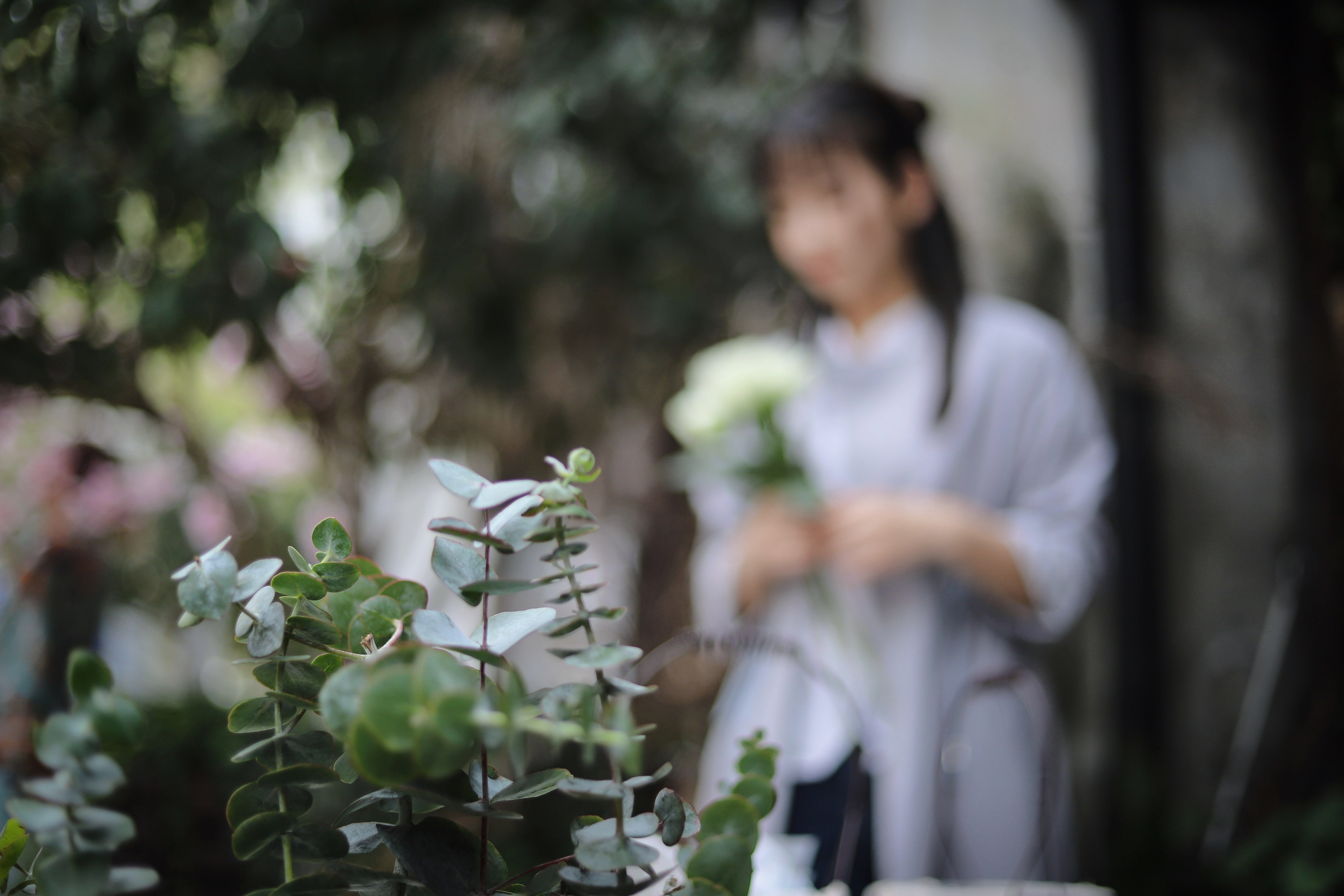 selective focus photography of plant near standing woman