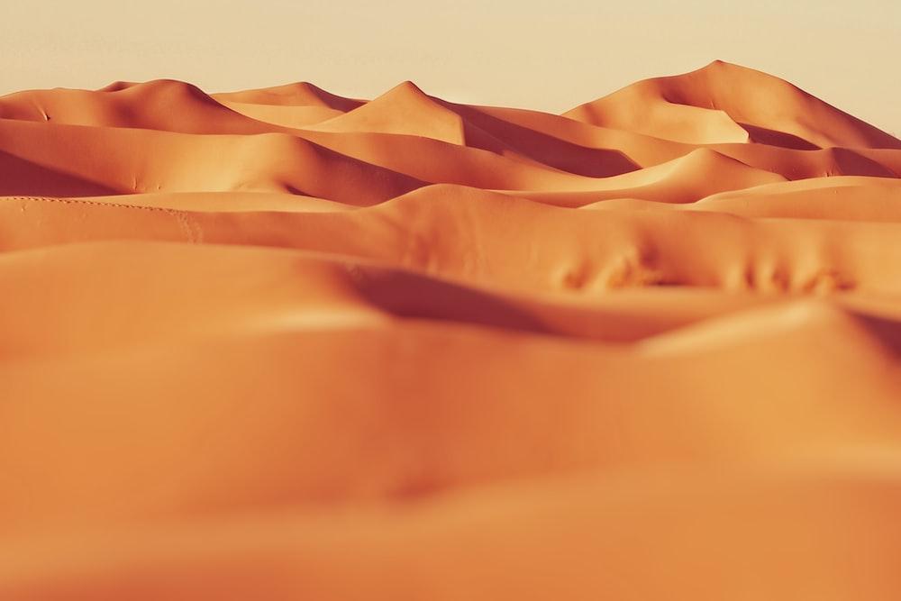 landscape photo of sand