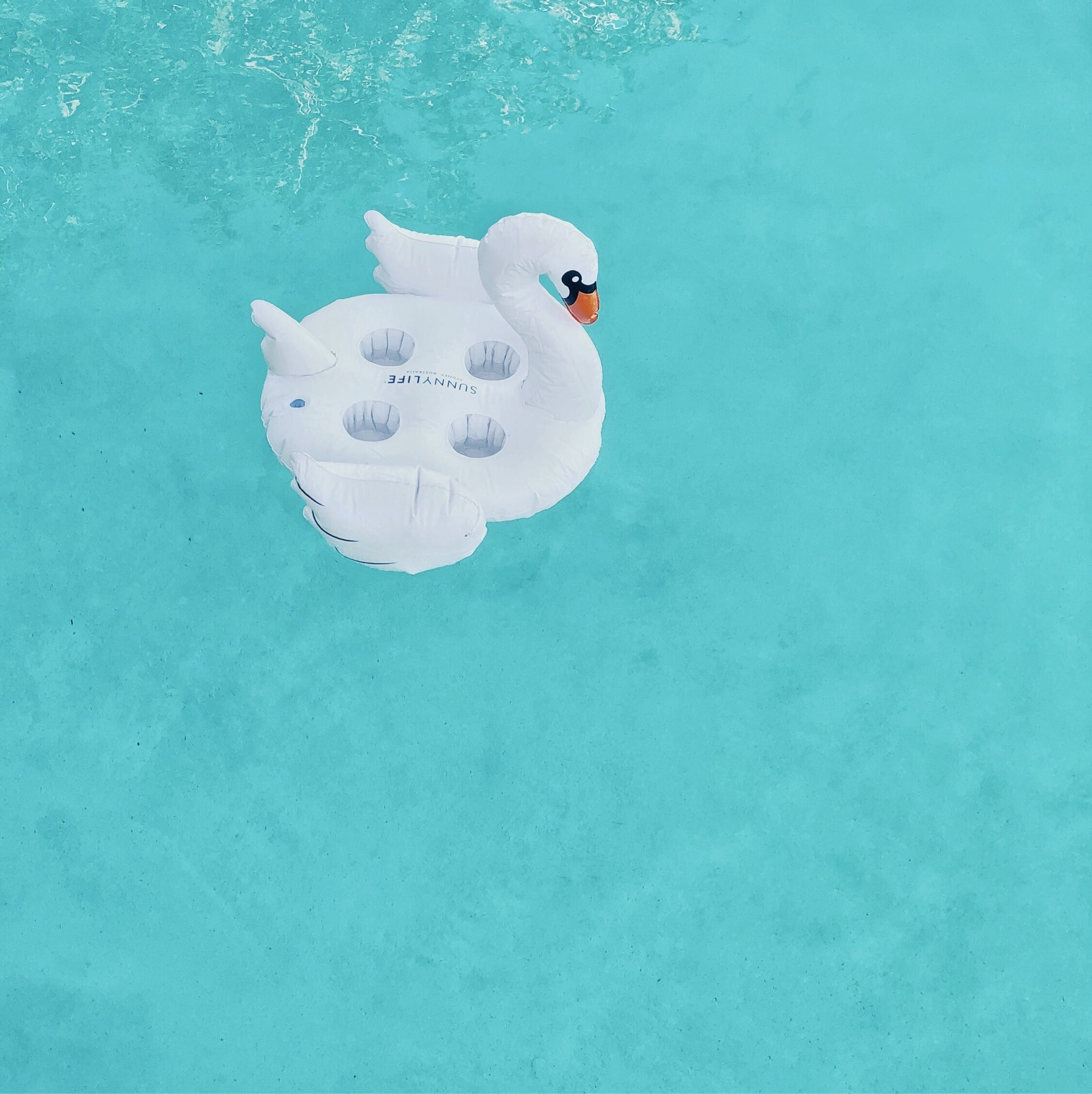 white swan inflatable on body of water