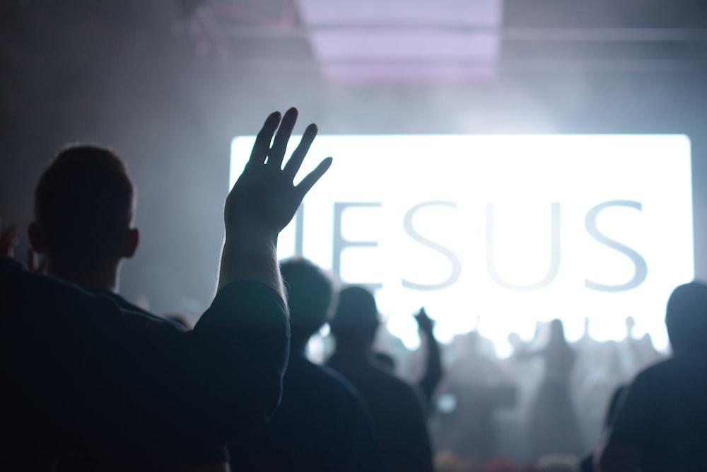 silhouette of people raising hands