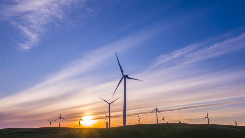 landscape photo of windmills