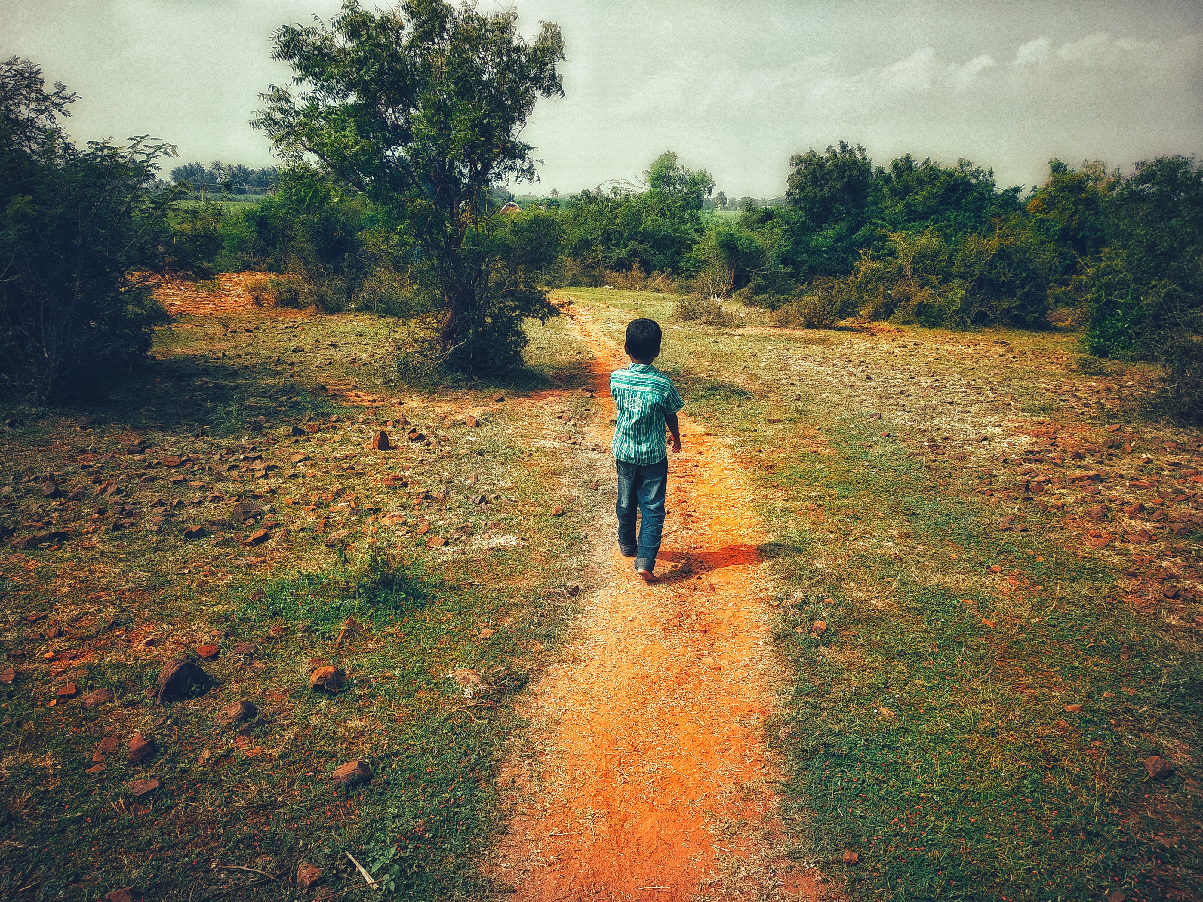 child walking on pathway