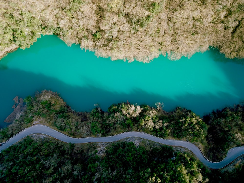 aerial phoography of road near river and green leafed trees