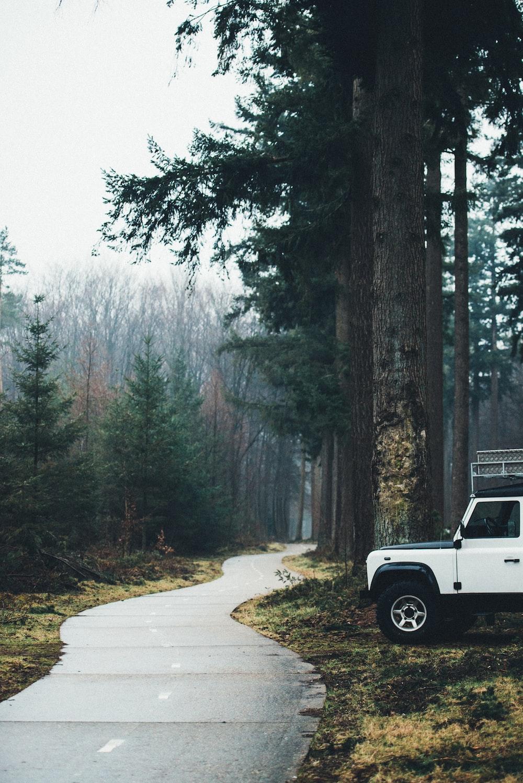 white car beside road