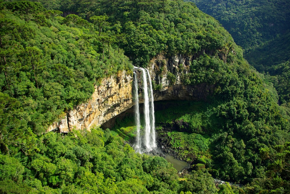 aerial photography of waterfalls surrounded with forest