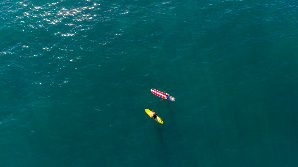 two surfers on water