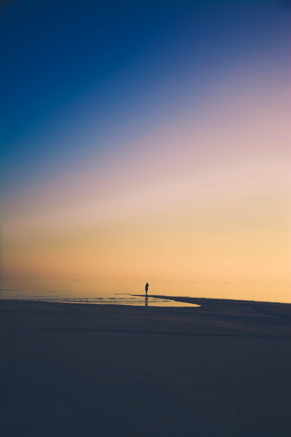 person standing on beach shore during golden time