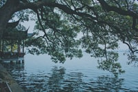scenery of body of water