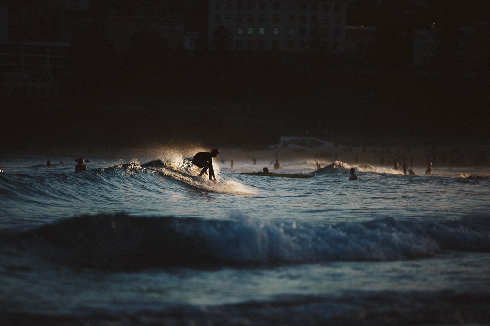 silhouette of people surfing the waves