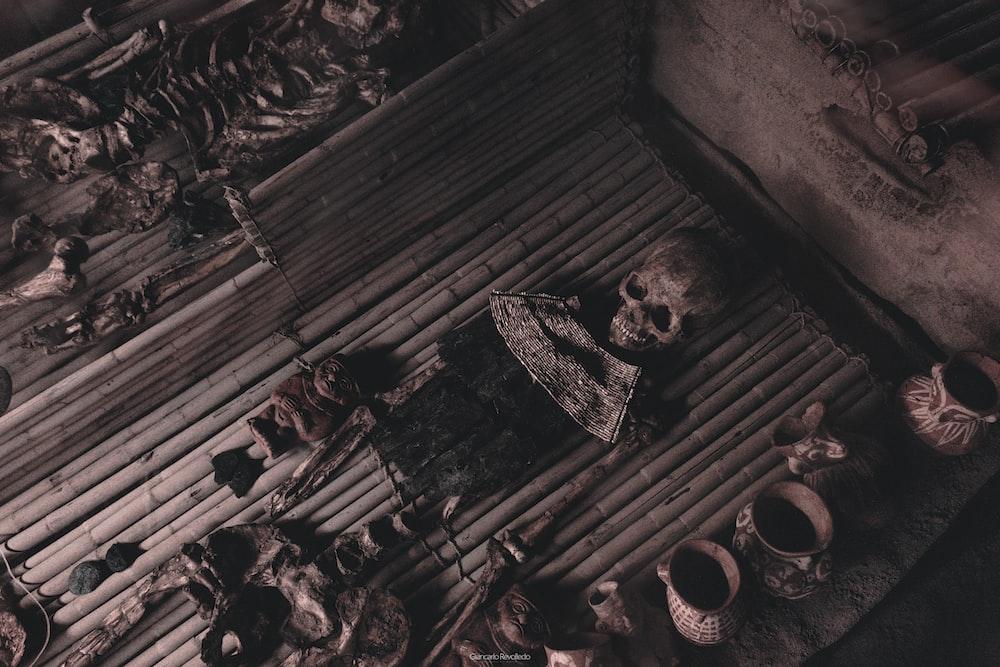 human skeleton decor