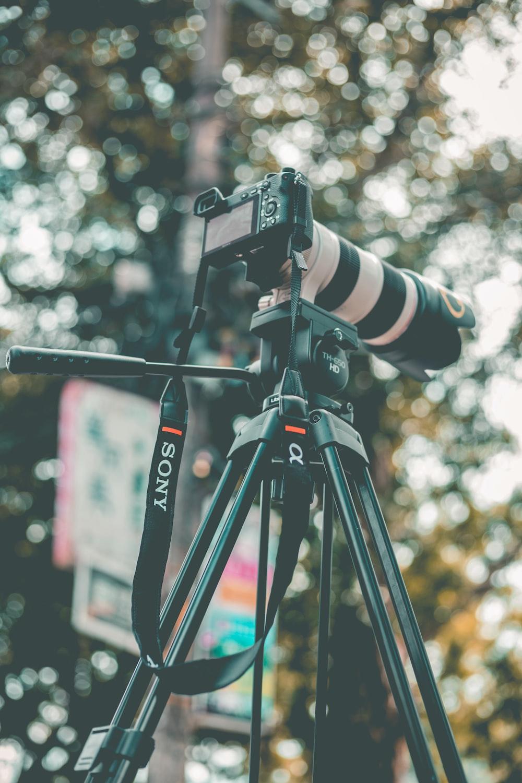 black and white Sony DSLR camera during daytime