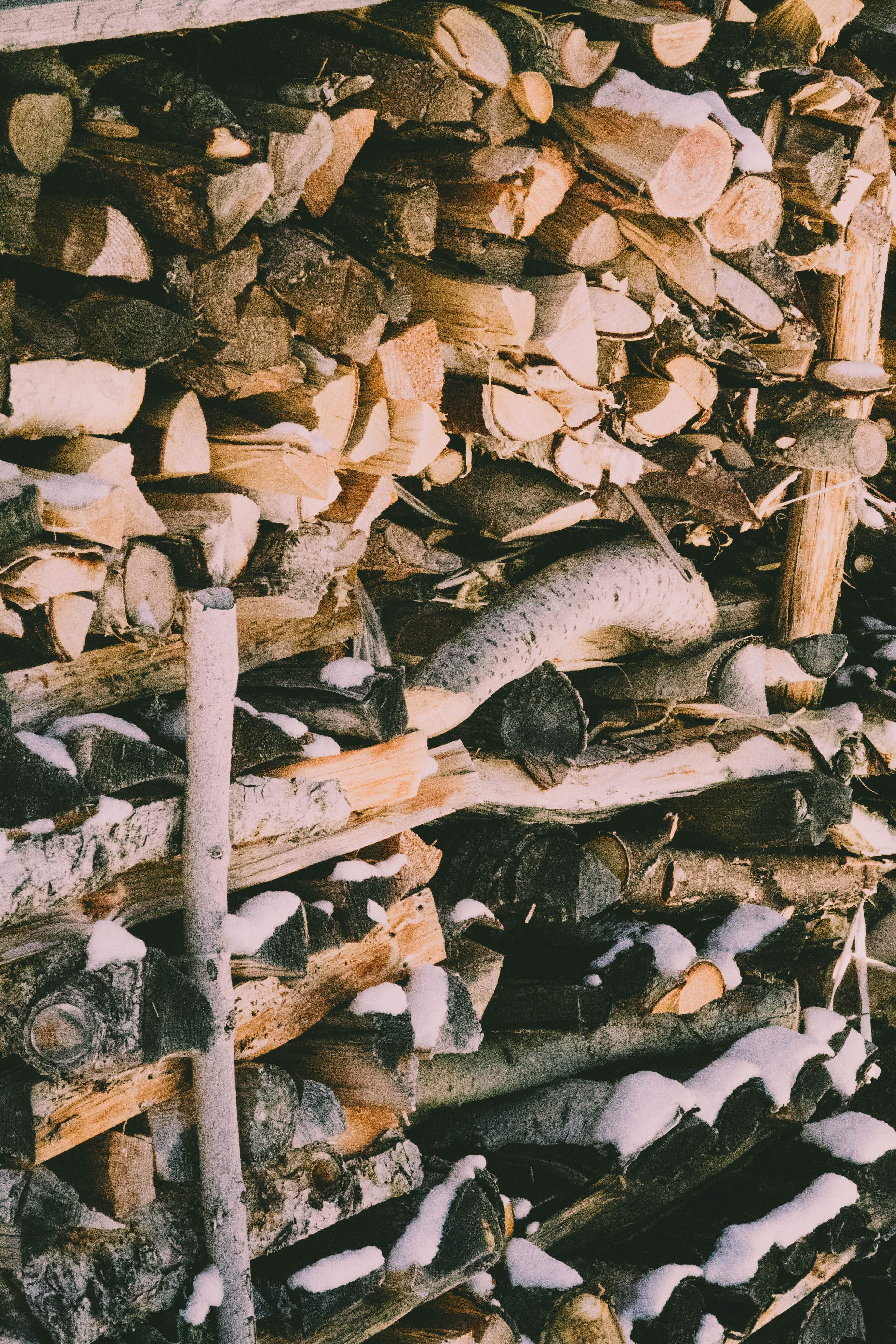 piled brown firewood