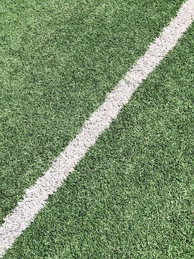 giants, green grass field
