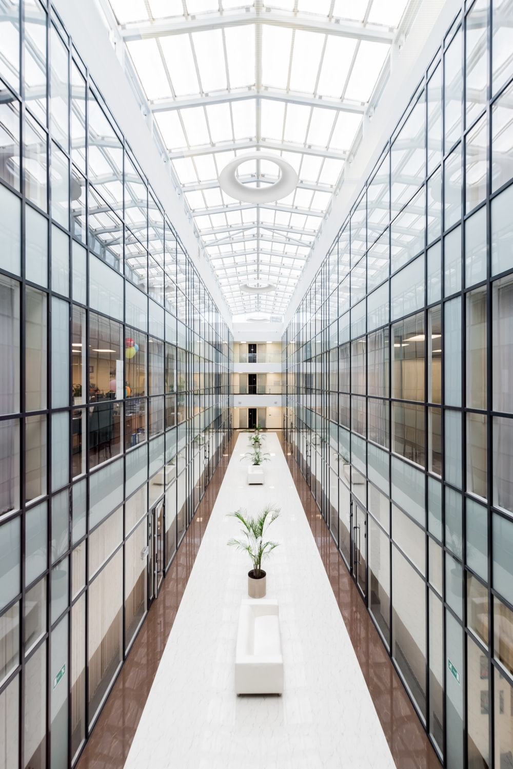photography of glass wall hallway