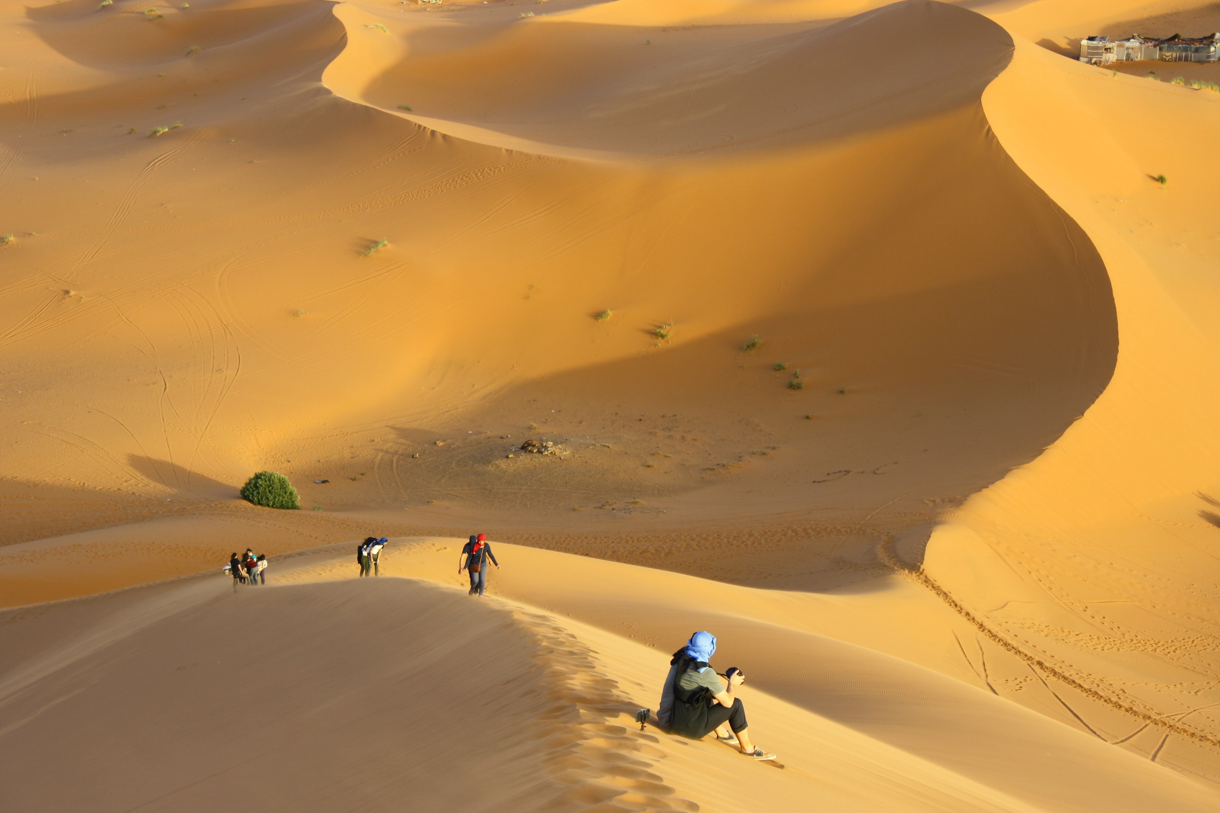 group of people standing on desert