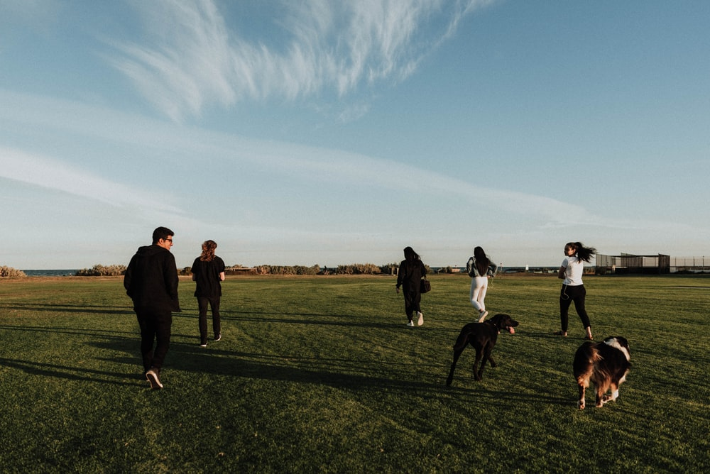 group of people jogging on green field during daytime