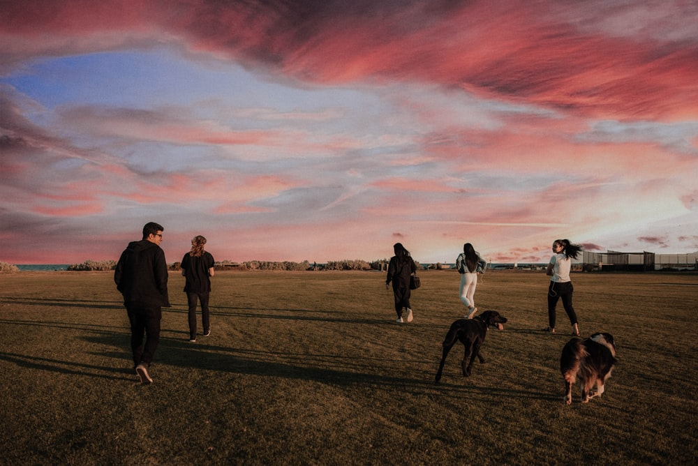four women and one man running together with two dogs on grass field