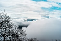 We hiked up Blood Mountain in a thick mist, the air sharp and refreshing as the clouds shifted around us at shoulder height. When we reached the summit, we found ourselves perfectly sandwiched between two cloud shelves. For the most part, our view was white and void for a nondescript distance, but for moments here and there, mountains and valleys emerged, both in the blankets of clouds and visible briefly beneath.