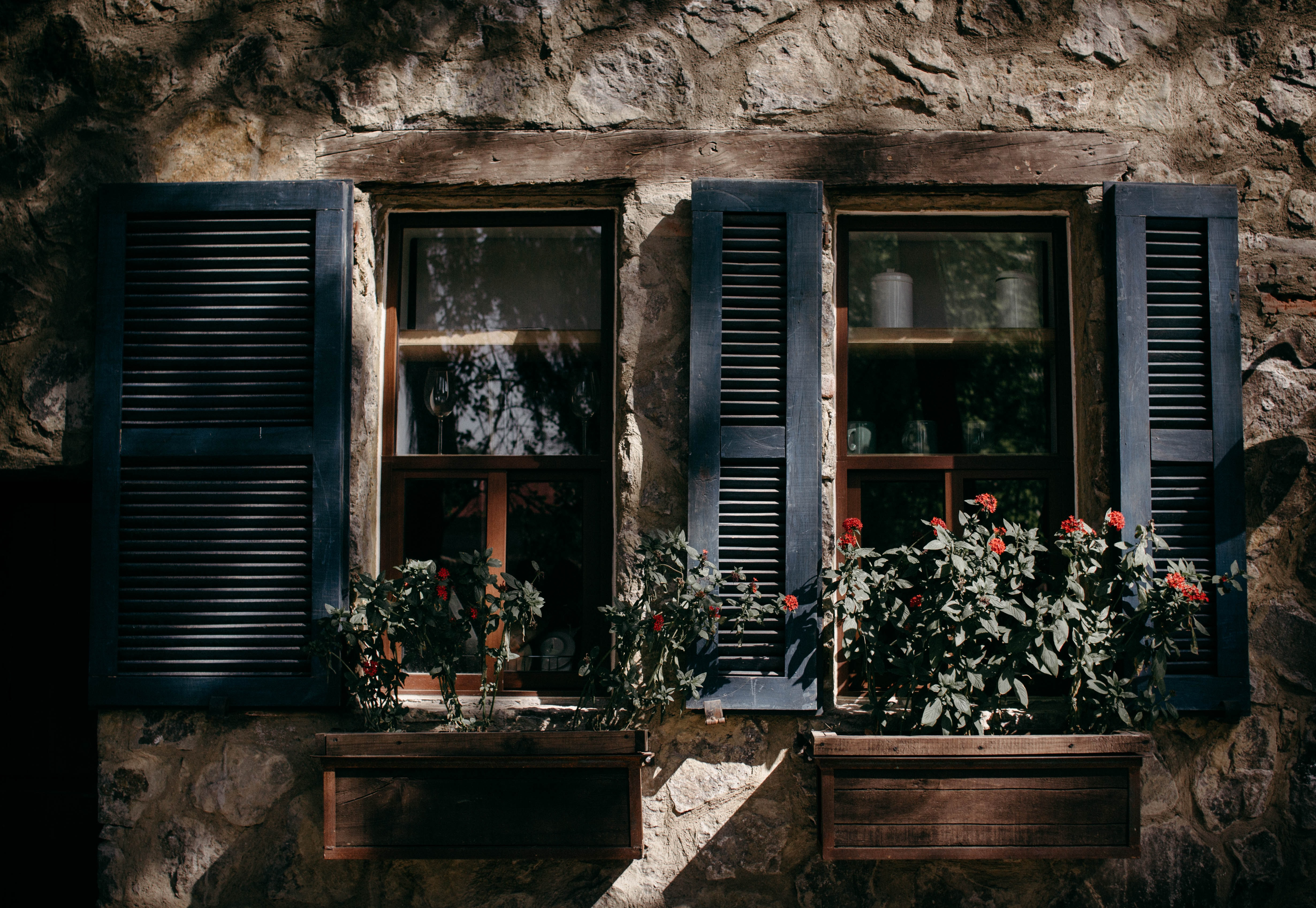 window with potted plants in front at daytime photo