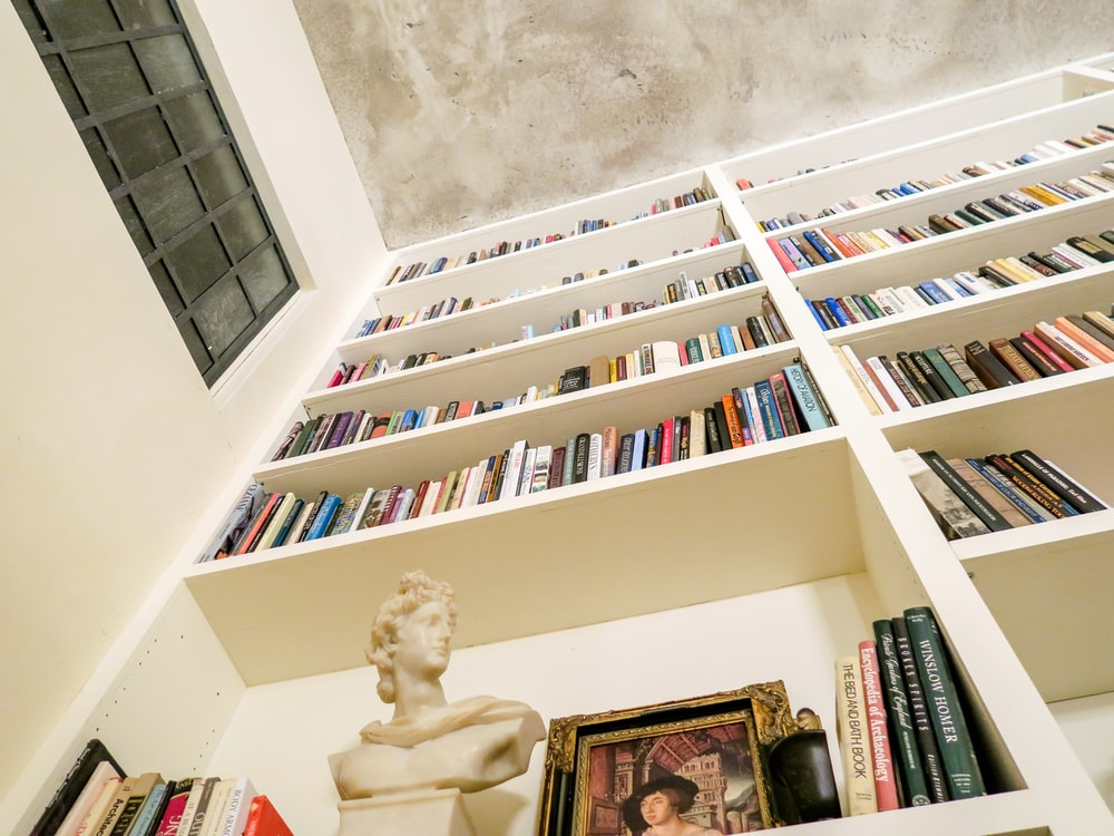 low angle photo of assorted book on bookshelf