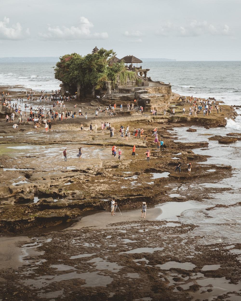 peoples on island