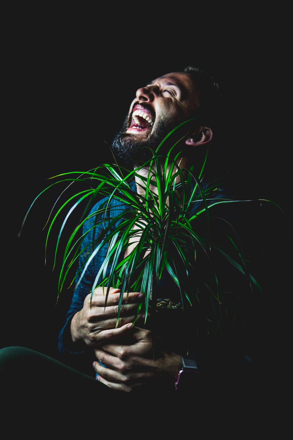 man holding green leafed plants