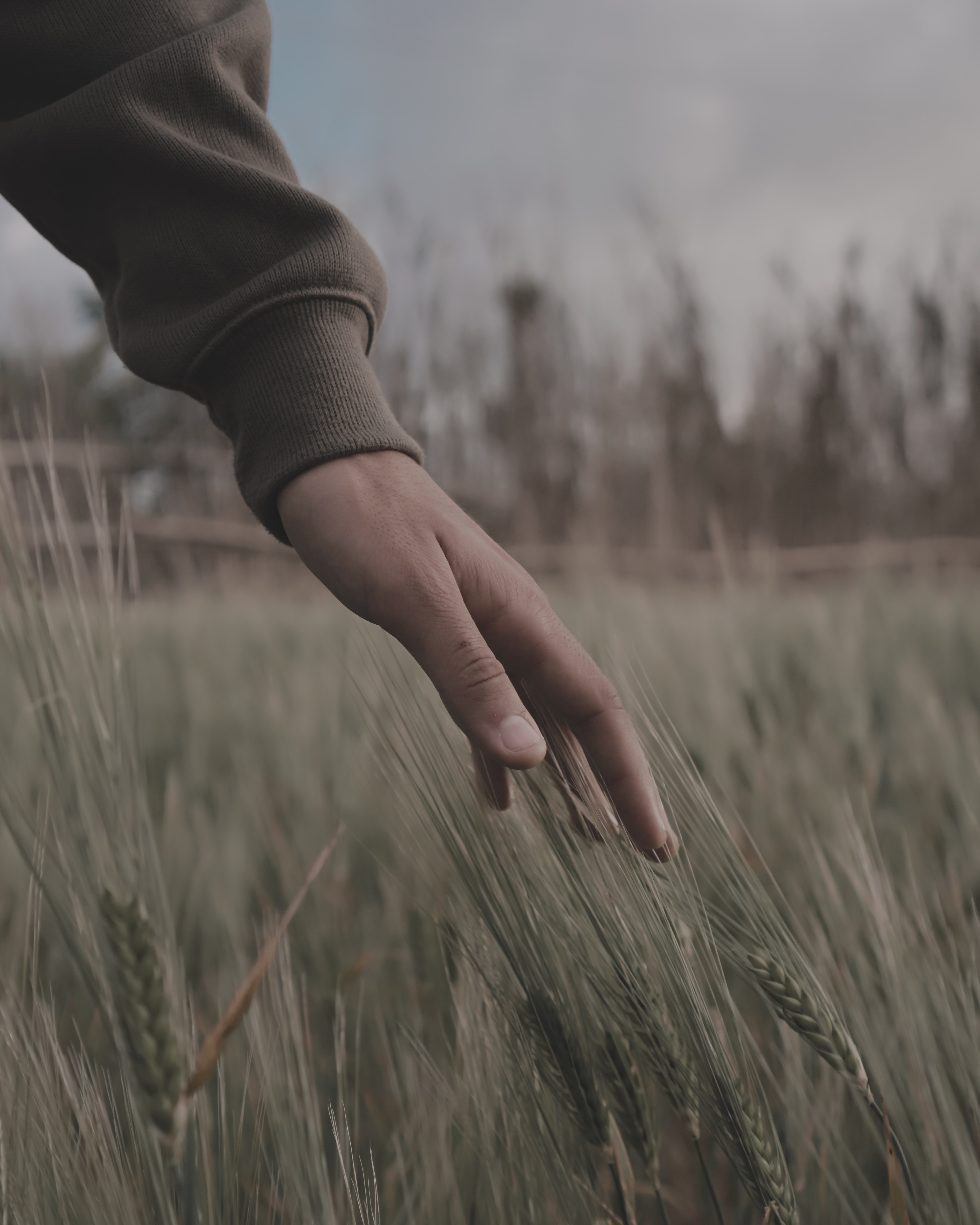shallow focus photography of person's hand