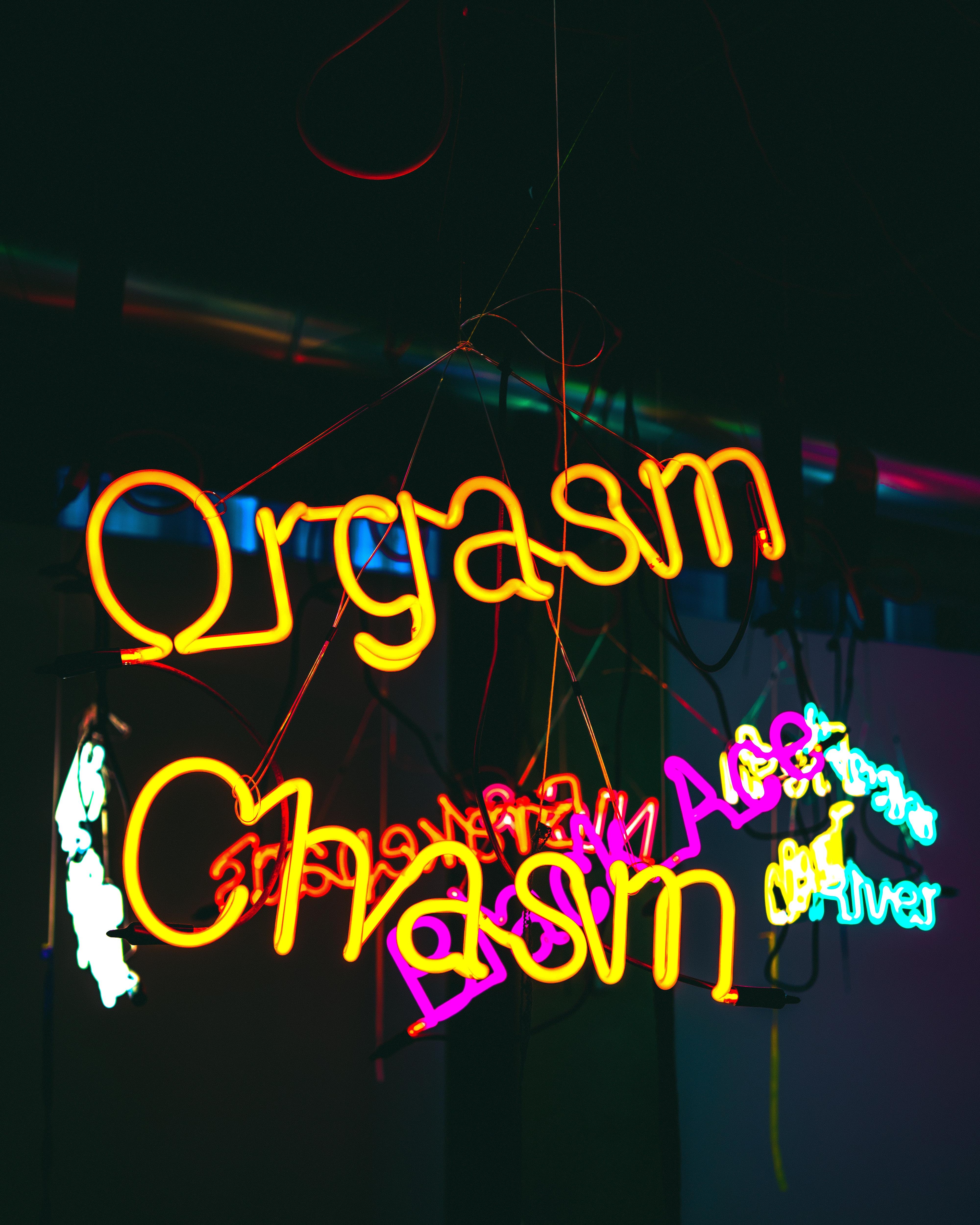 Orgasm Chasm neon signage