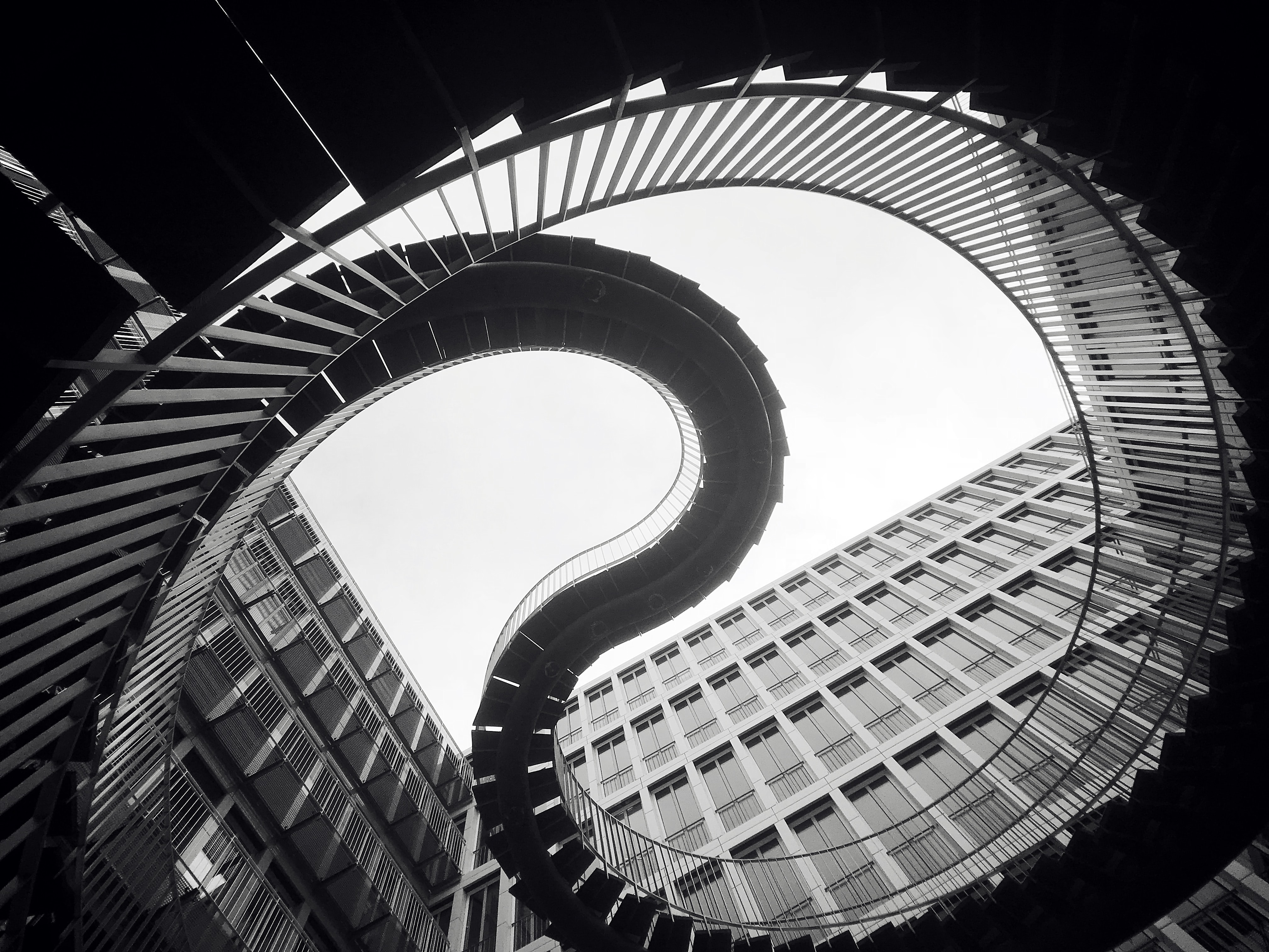 grascale photo of spiral stairs