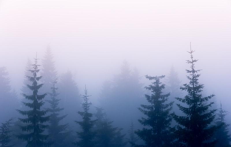 黑森林 藍月本篇 藍月傳說 修龍 奇幻架空