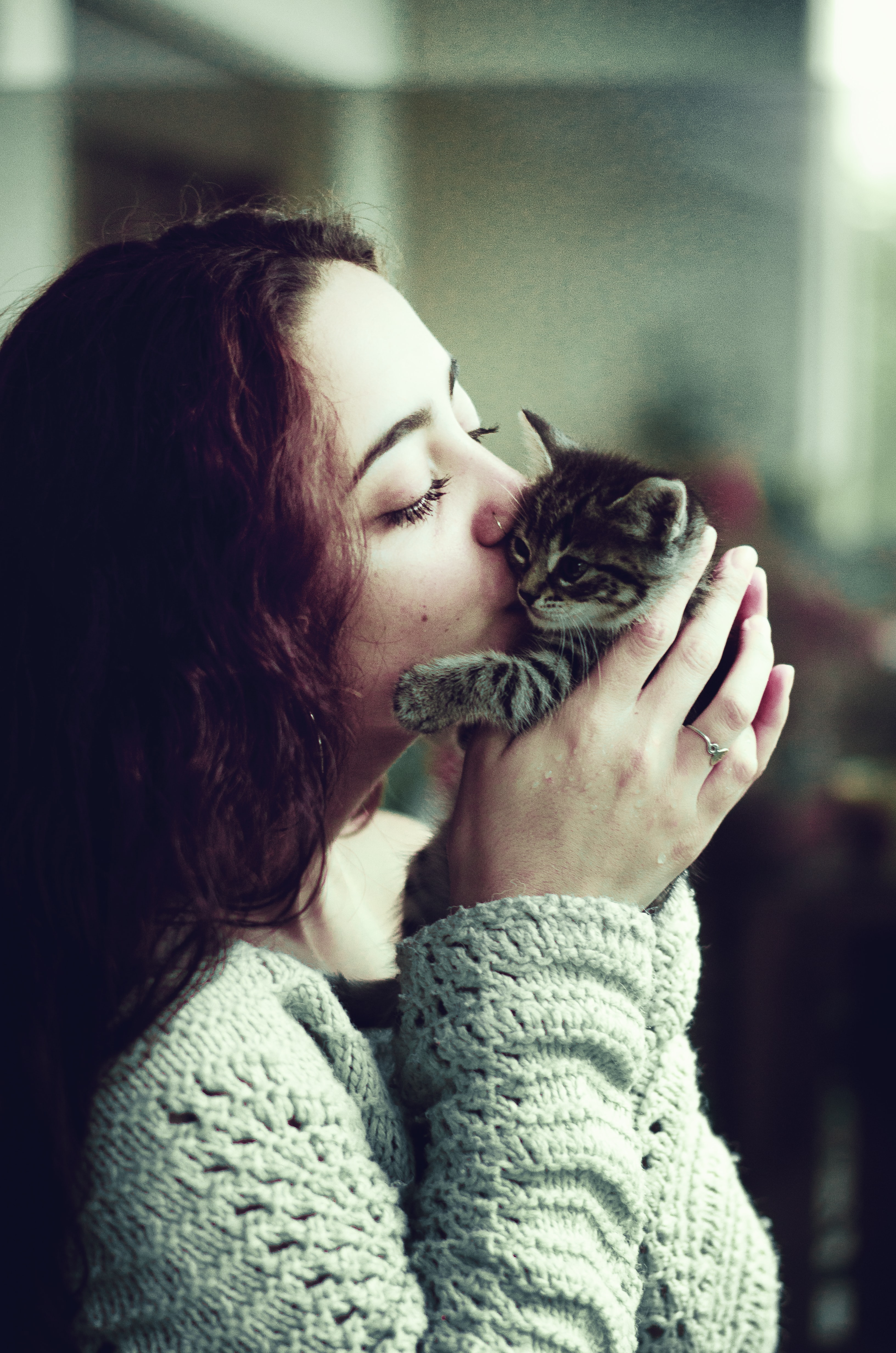woman kissing gray tabby kitten