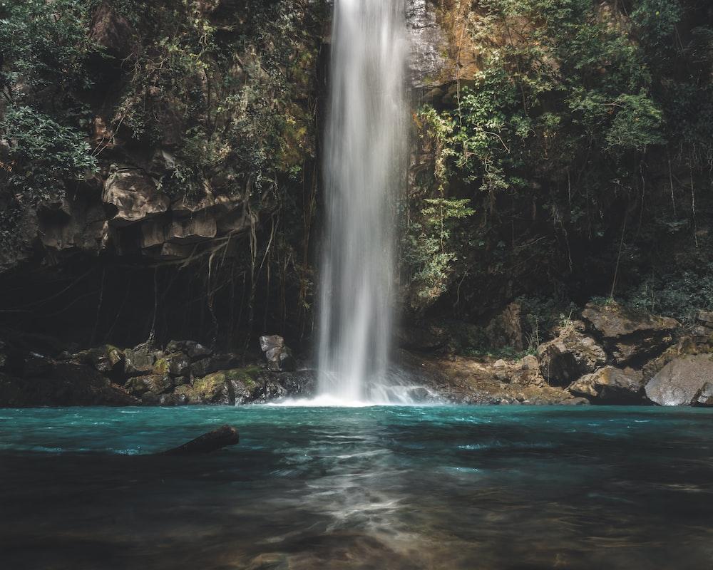 waterfalls between trees at daytime