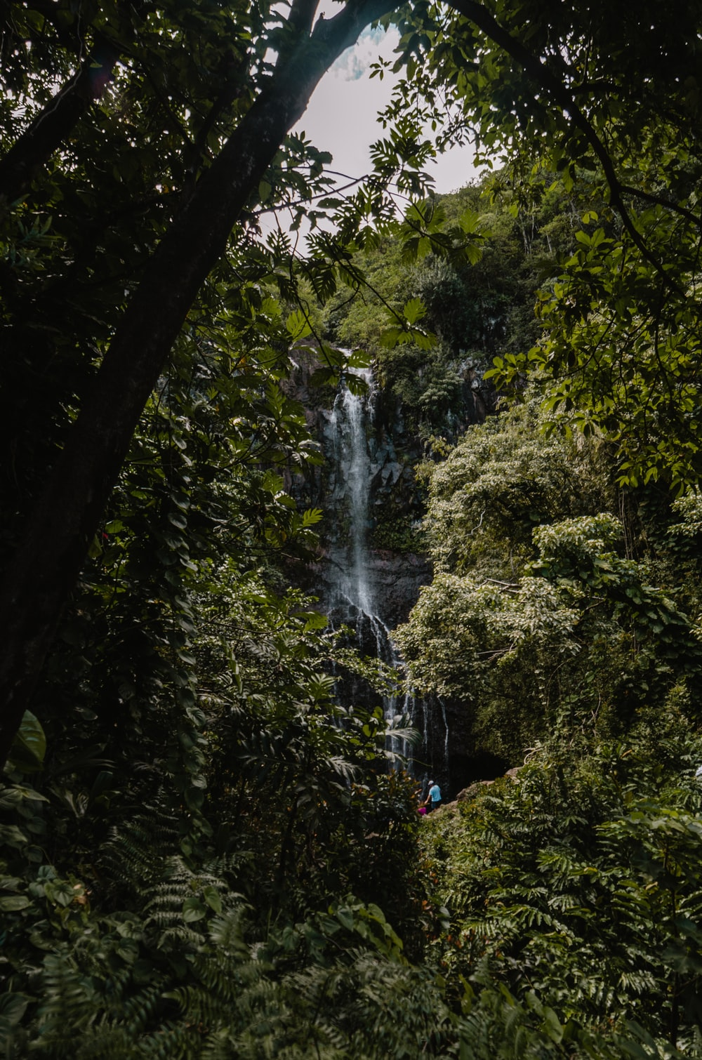 water falls at forest during daytime