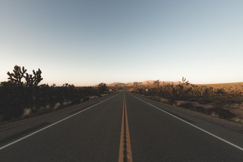 road between field towards mountain