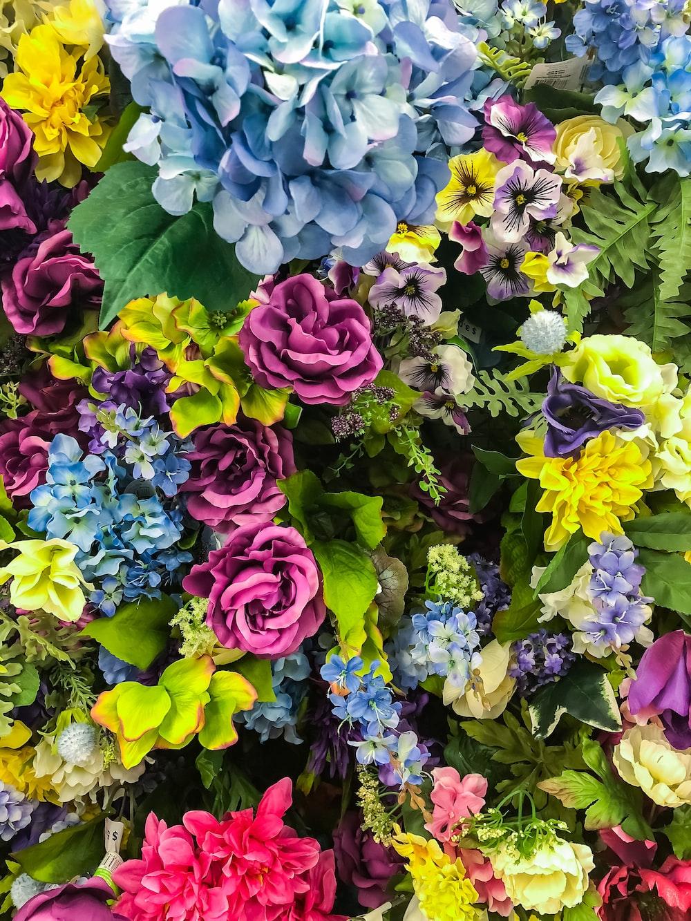 900+ Floral Background Images: Download HD Backgrounds On Unsplash