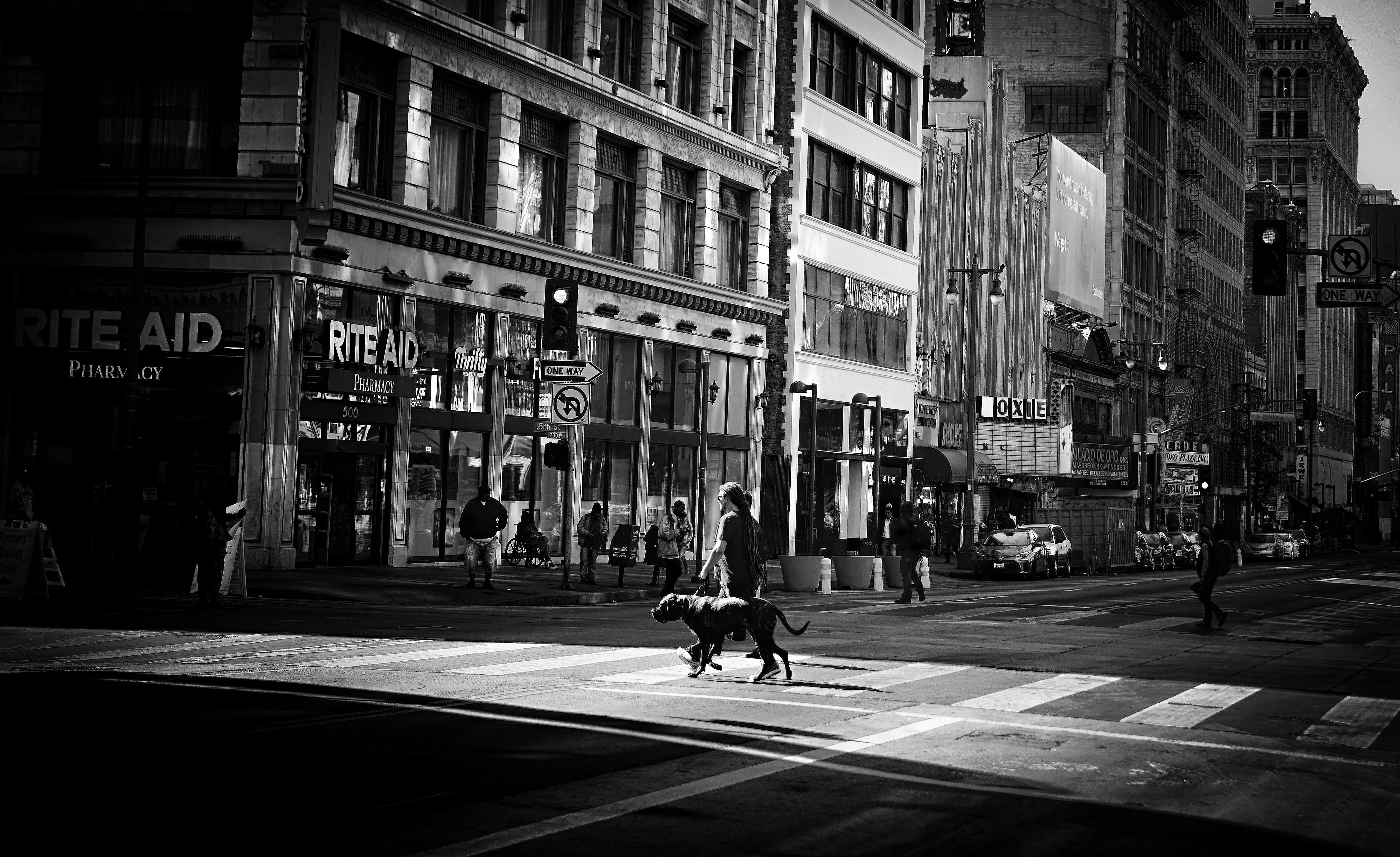 grayscale photo of person walking on street with dog