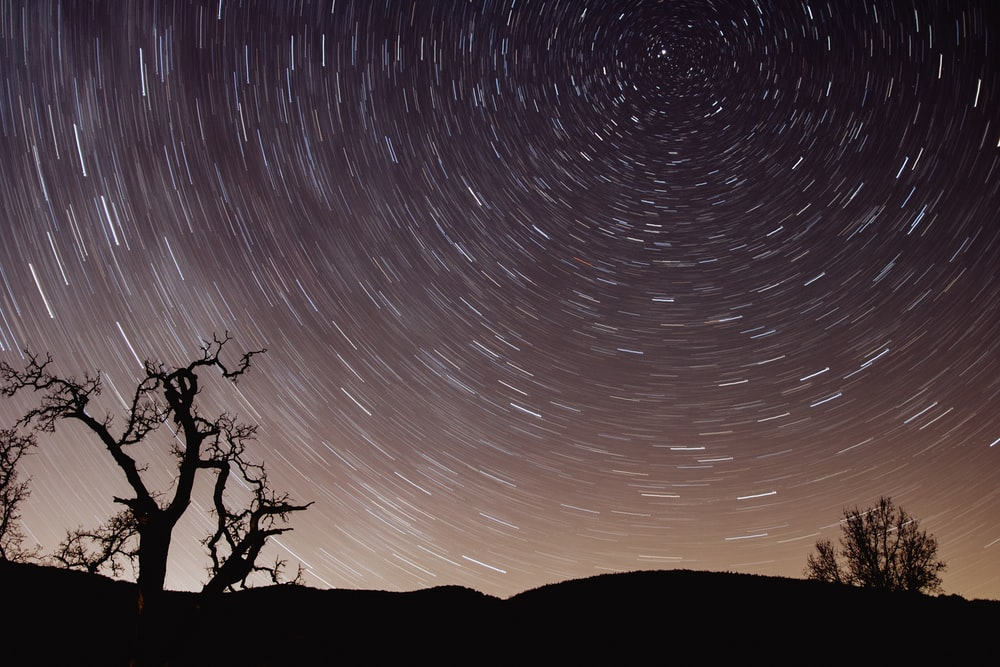 photo of star trail