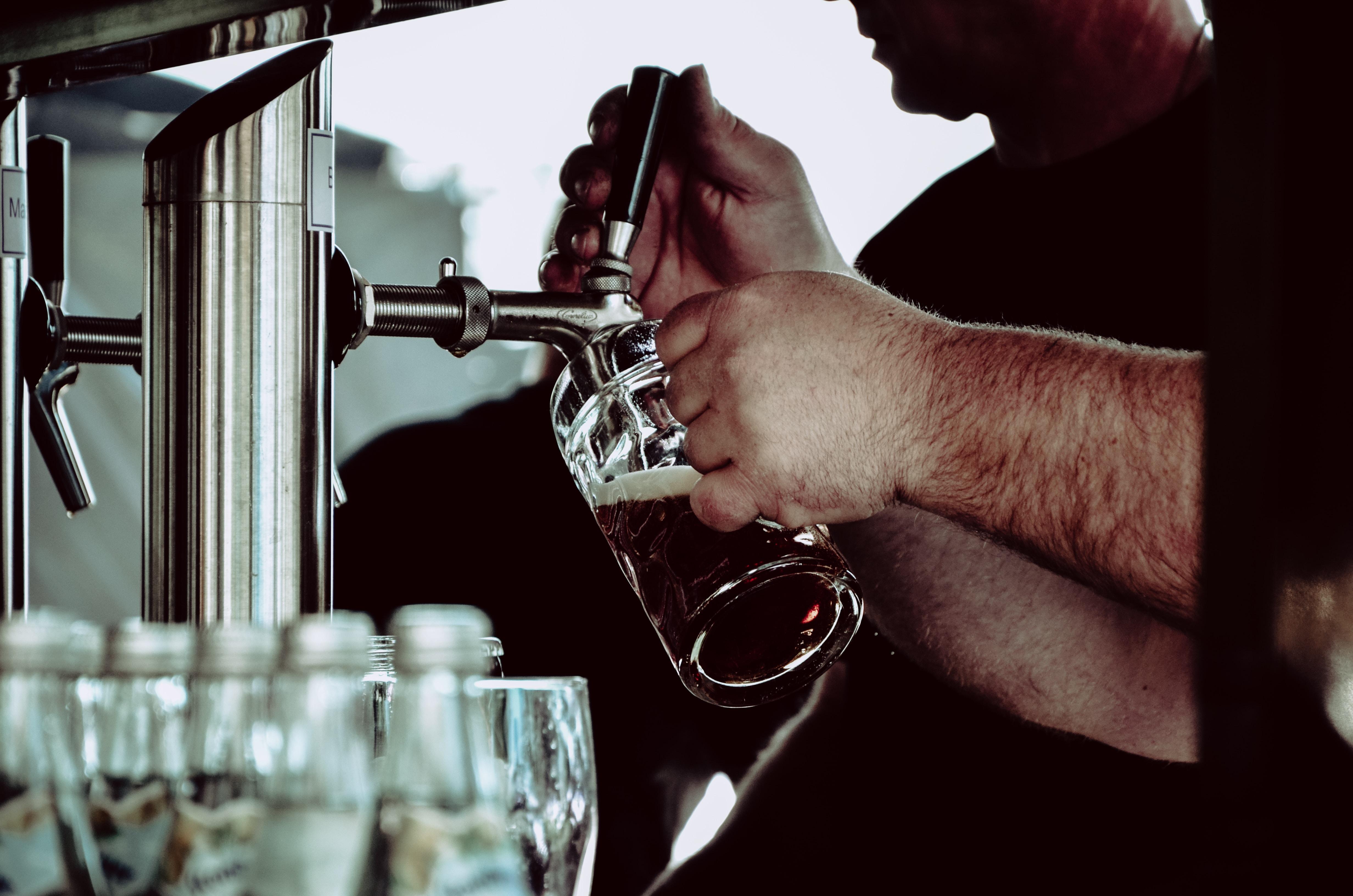 person holding beer mug