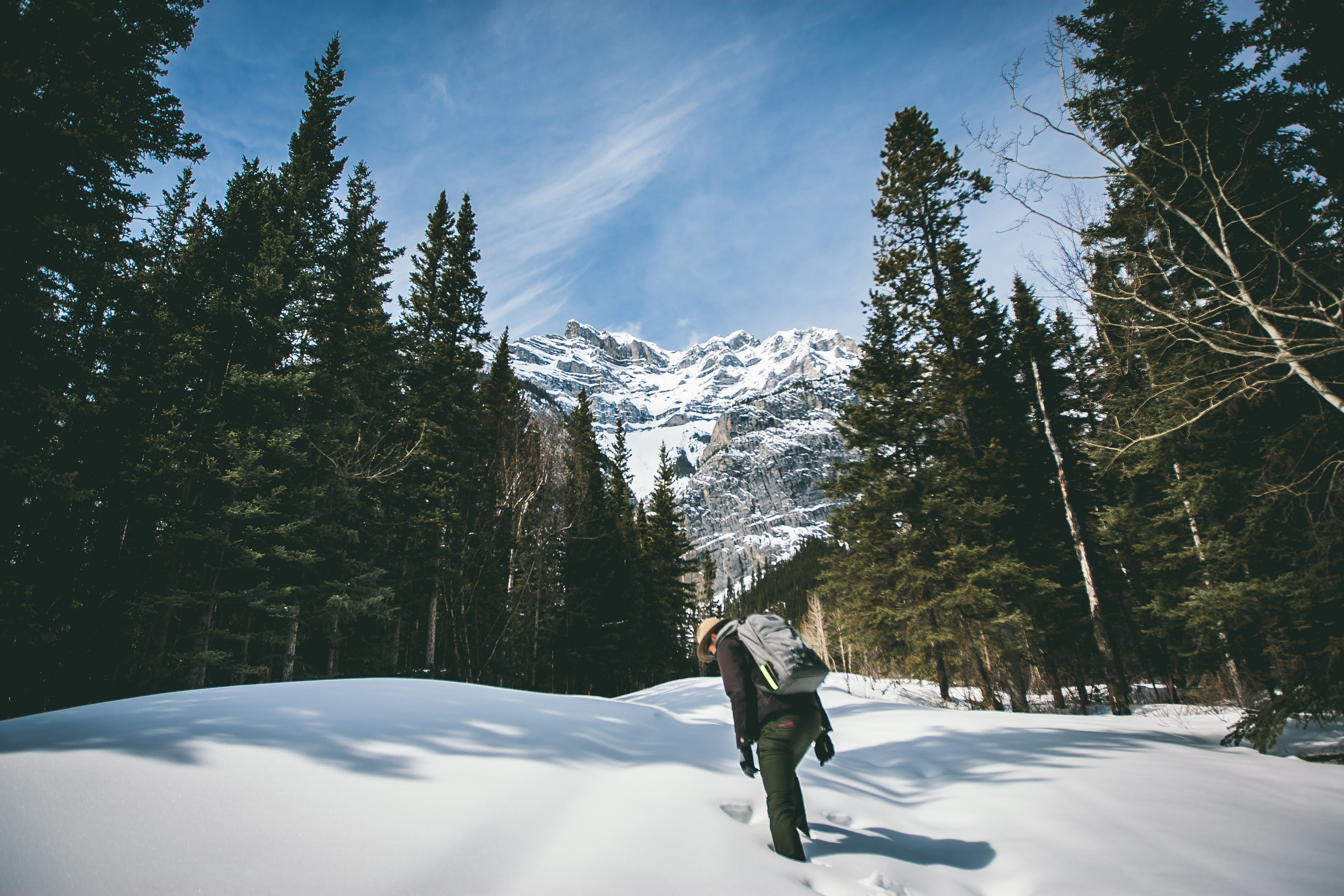 person walking in forest covered in snow