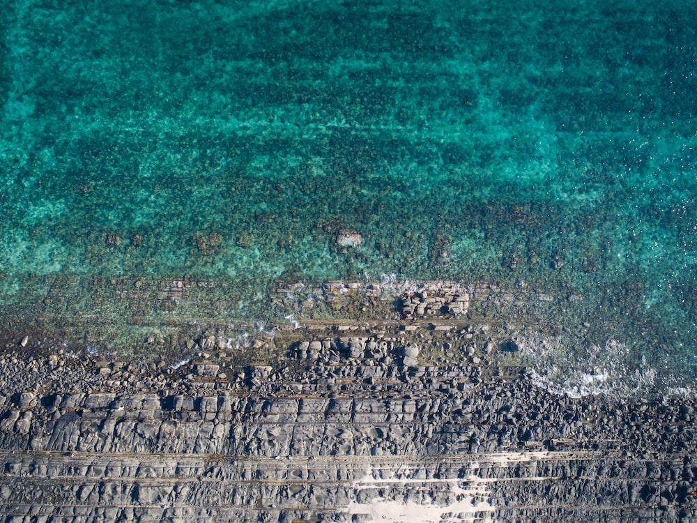bird's eye view photography of coastline