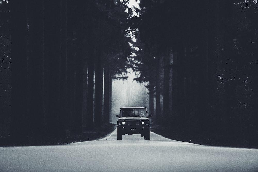 black car in between trees